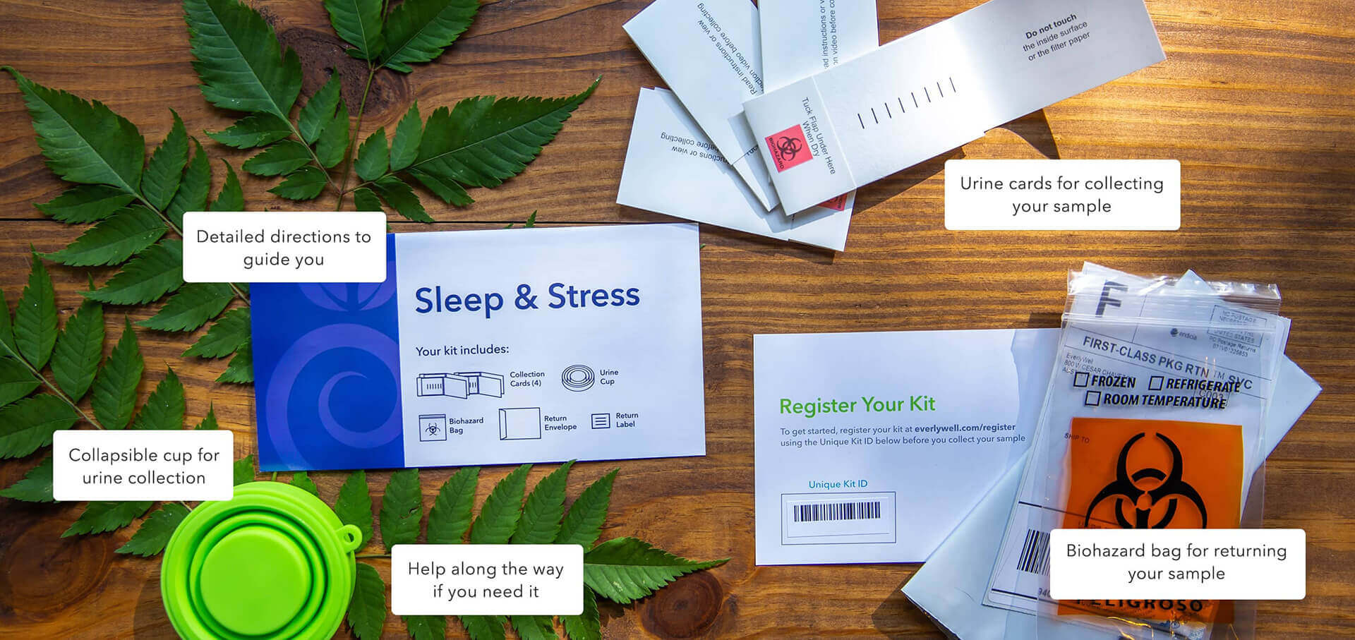 At-home Sleep and Stress Test kit components